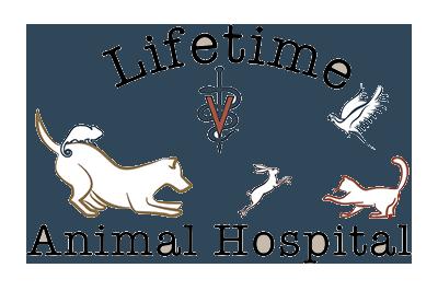 Lifetime Animal Hospital
